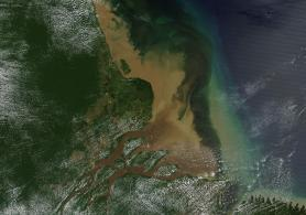 Photo satellite en couleur du delta de l'Amazone